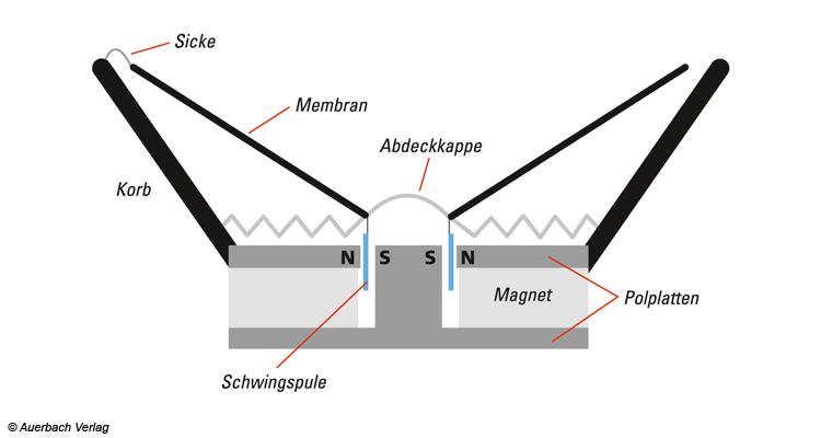 An der Schwingspule liegt das Wechselspannungssignal der Musik an. Durch die Lorentzkraft wird die Spule und die daran befestigte Membran in Schwingung versetzt