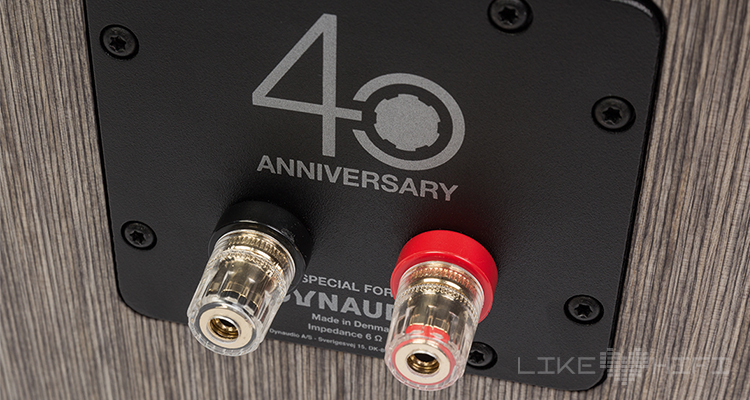 Dynaudio Special Forty Anschlussterminal