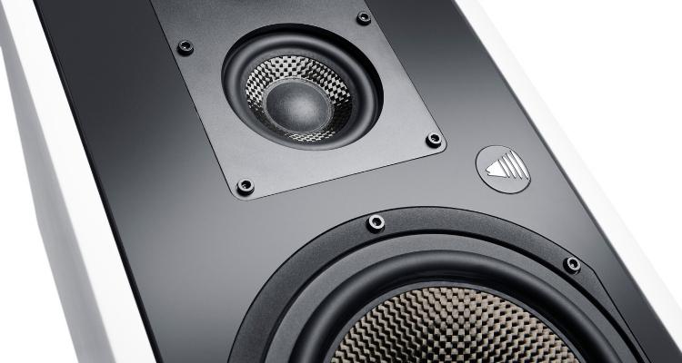 Mitteltöner der Fishhead Audio Resolution 1.6 BS