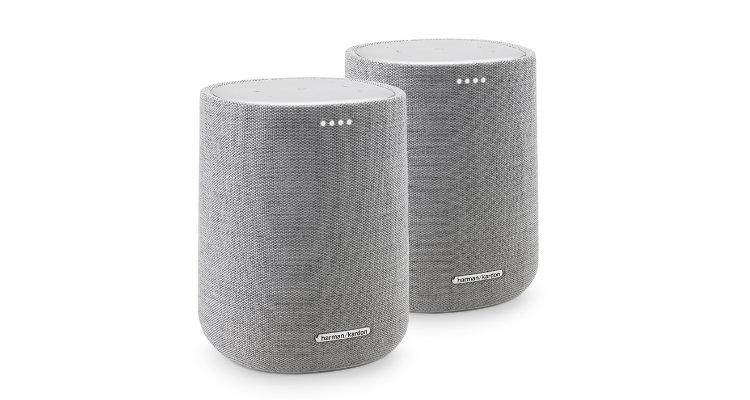 Harman Kardon Citation Duo grau grey Multiroom Lautsprecher Smart Speaker