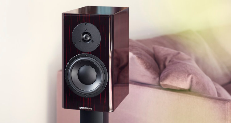 Dynaudio Special Forty Black Vine Lautsprecher Speaker in Ebony Wave Farbe Colour News Test Review